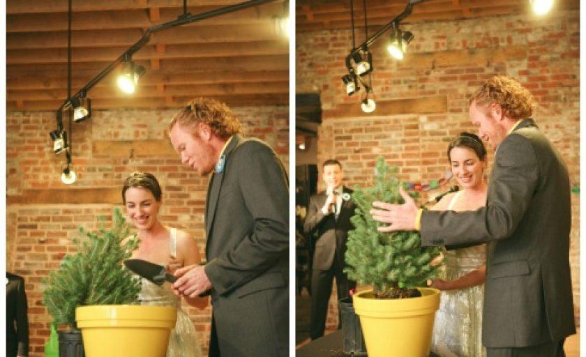 Cerimônia da Árvore